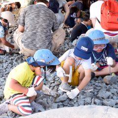 化石発掘体験(どきどき恐竜発掘ランド)
