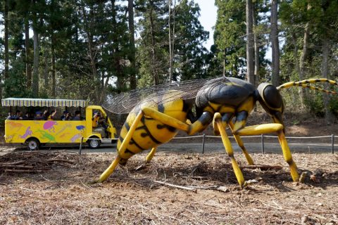 巨大昆虫冒険ツアー